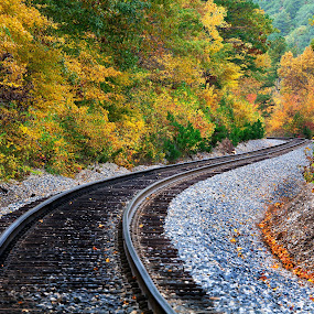 S - Curve Track in the Fall - Ouachitas of Arkansas by William Rainey  - Landscapes Forests ( backpacking, state parks, fall colors, national parks, leaves, trains, photography, hiking )