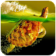 Turtle HD Wallpaper for PC-Windows 7,8,10 and Mac