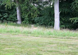 Photo: På vej til Grundtvigs grav ved Køge Ås.