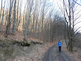 Photo: ... s pár perc múlva már az erdőben találtuk magunkat Bükki kilátásokat keresve! :-)