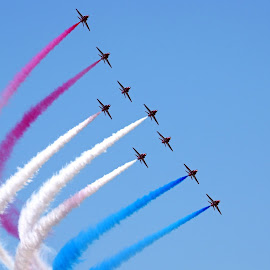 Red Arrows by Ingrid Anderson-Riley - Transportation Airplanes (  )