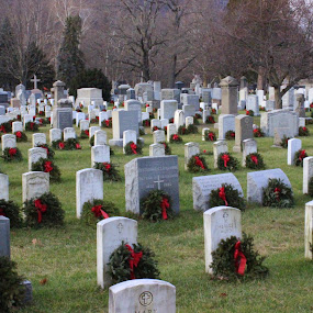West Point Cemetery 1 by Janet Smothers - City,  Street & Park  Cemeteries (  )