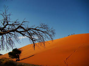 Photo: La dune 45 à Sossusvlei dans le Namib Naukluft National in Namibia