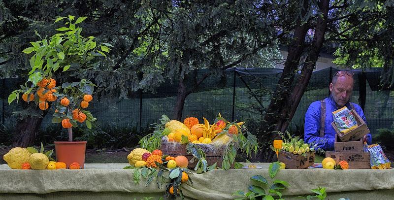 frutta esotica a Milano di tarty