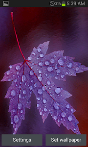 Purple Leaf Live Wallpaper screenshot 0