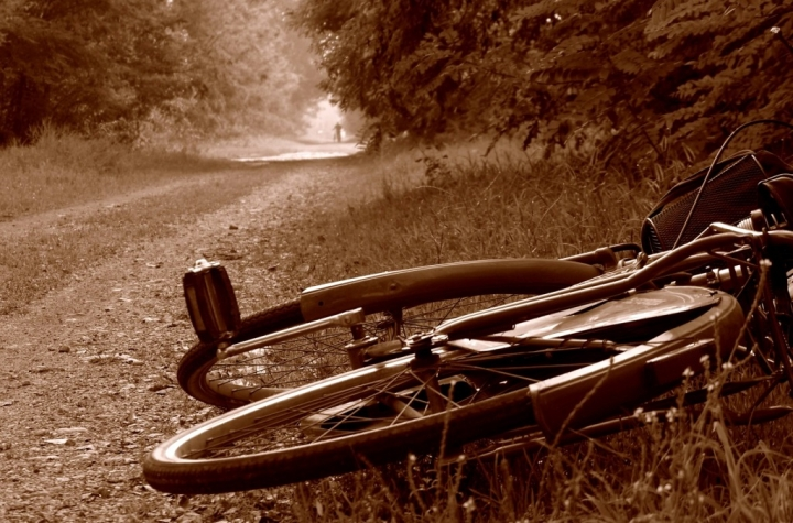 Passeggiando in bicicletta... di Sere469