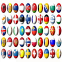 Guess flags 2020 icon