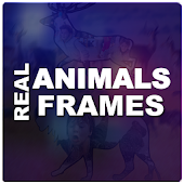 Real Animals Frames PIP