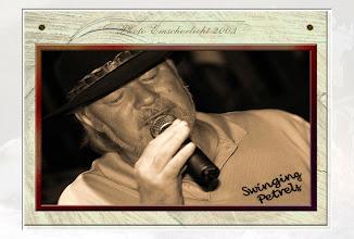 Foto: 2007 12 08 - R 03 10 01 118 - P 032 - Swinging Petrels