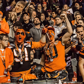Lions Fans by Garry Dosa - Sports & Fitness American and Canadian football ( orange, sports, teams, players, black, indoors, cfl, spectators, stadium, football, people, screaming )