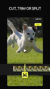 ?Efectum – Slow Motion, Reverse Cam, Fast Video (MOD, Pro) v2.0.27 5