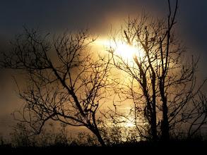Photo: Sunset in the fog, Pt Reyes
