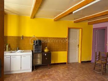 maison à Saint-Broingt-le-Bois (52)