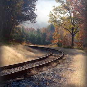 Around the Bend by Vivian Gordon - Travel Locations Railway ( vigor, track, train, landscape, rural, country )