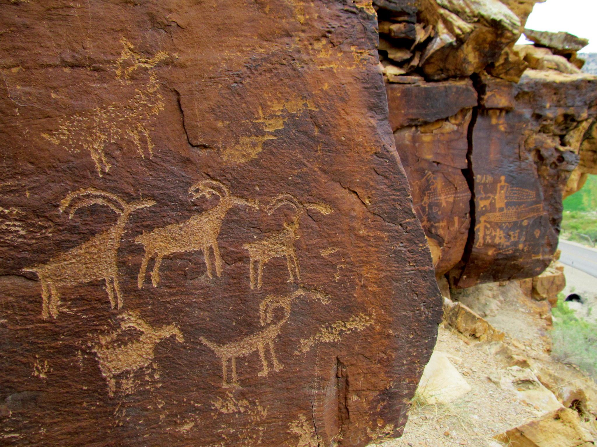 Photo: Various sheep petroglyphs