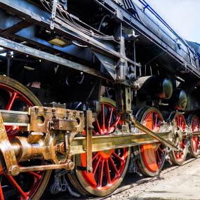 Exquisite by Daniela Maskova - Transportation Trains ( steam train, czech republic, luzna )