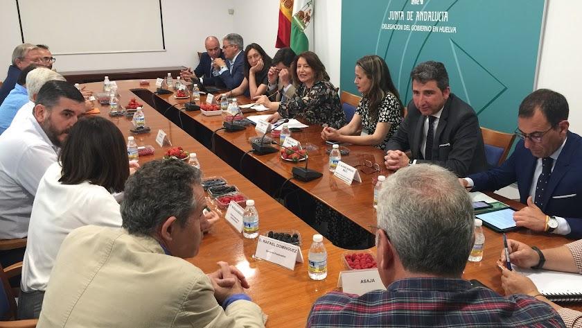 Reunión Interfresa y cítricos con la consejera de la Junta de Andalucía, Carmen Crespo.