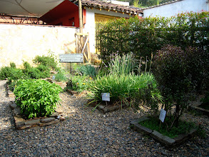 Photo: The herb garden at Queareparaenamorarte.