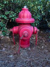 Photo: Day 353-Holiday Hydrant