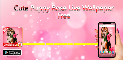 Rose Live Wallpaper Puppy Dog LWP 2019