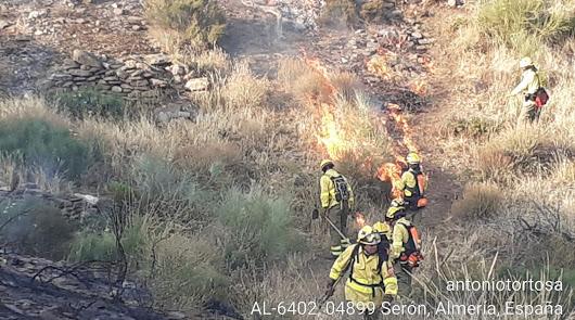 Imagen del incendio publicada por @Plan_INFOCA.