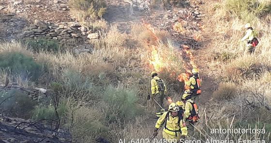 Estabilizado el incendio forestal declarado en Serón