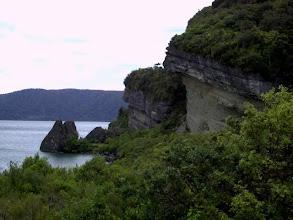 Photo: New Zealand nature
