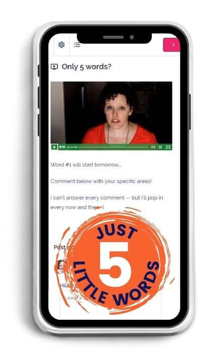 5 word challenge image on phone