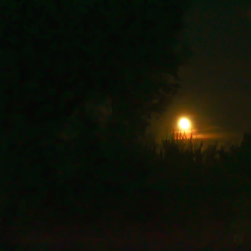 La luna di gocciazzurra