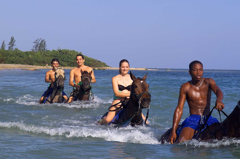 Book a horseback ride and swim excursion on your next cruise to Montego Bay, Jamaica.