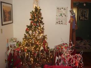 Photo: Kitty's Christmas Tree