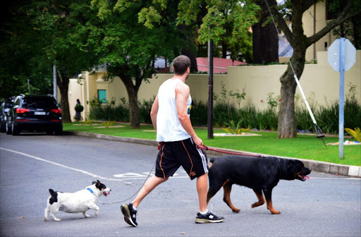 A man walks his dogs past the residence of Nelson Mandela in Johannesburg on December 27, 2012.