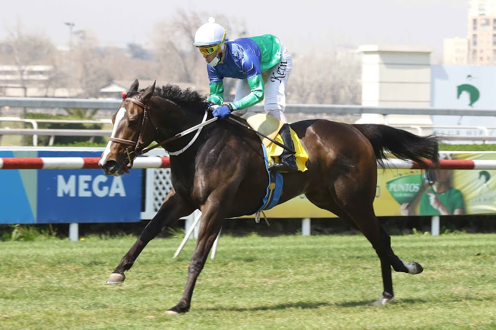Donatella War (Declaration of War) se adjudica Condicional (1600m-Pasto-CHS). - Staff ElTurf.com