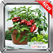 Vegetable Garden Ideas by tasukiapps icon
