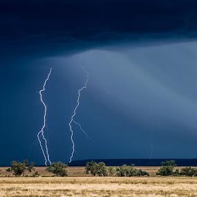 Longreach Lightning by Brent McKee - Landscapes Weather ( clouds, fuji x, lightning storm, mountains, lightning, storm, rain )