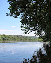 Photo: Then we went to find Marshall Island in the Delaware River where he once lived which was near Tinicum County Park