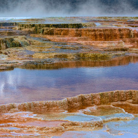 Hot Springs by Brian Adamson - Landscapes Waterscapes ( water, yellowstone, colors, hot springs, mammoth hot springs, steam )