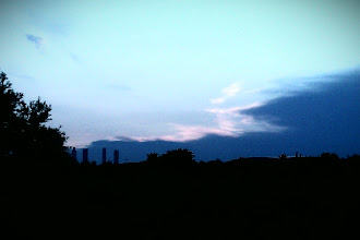 Photo: Precioso atardecer en la colina de olivos cespeados