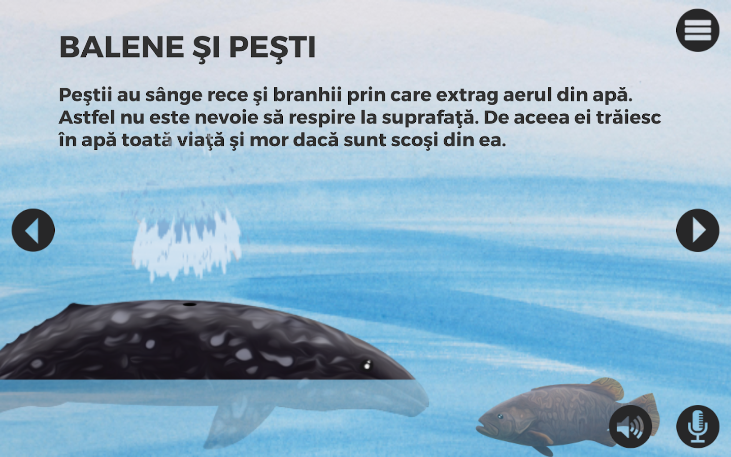 Balene si delfini- screenshot