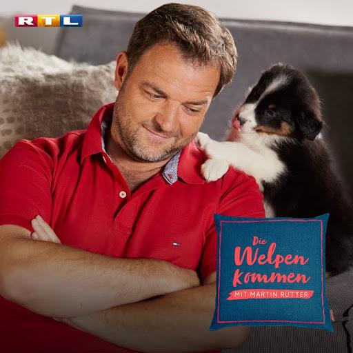 Martin Rutter Die Welpen Kommen Staffel 1 Tv Bei Google Play