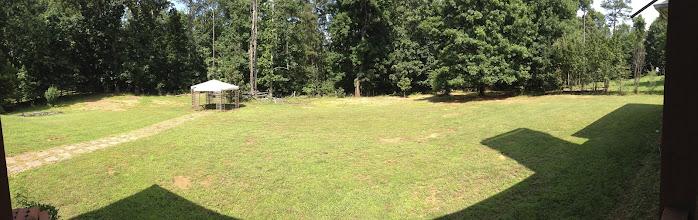 Photo: Backyard from upstairs bedroom. No gazebo.
