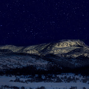 Clear nightsky by Fredrik A. Kaada - Landscapes Mountains & Hills ( moon, sky, inspiration, tree, stars, track, star, trees, forest, landscapes, info )