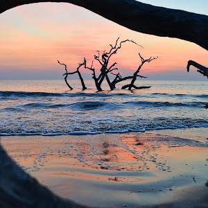 driftwood_window2.jpg