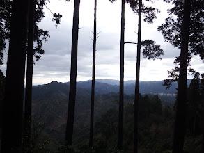 樹間から南側を望む(左に仏ヶ平)