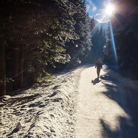 Zabljak by Daniel Pavlinović - Landscapes Mountains & Hills ( montenegro, zabljak, snow, pwcsunbeams-dq, sun )
