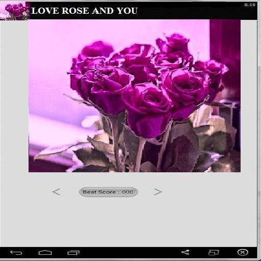 Love Rose and You