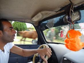 Photo: Taxikář co nás vezl z Matanzas do Varadero. Teda kousek před Varadero, protože neměl licenci vozit turisty do centra nebo tak něco.