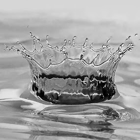by Boris Buric - Abstract Water Drops & Splashes (  )