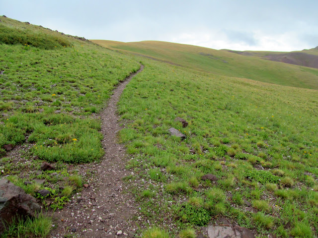 Trail through green rolling hills