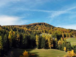Photo: Herbst 2013 in Stierva